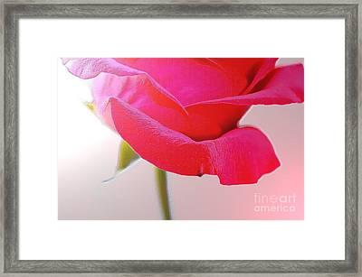 Innocence Of Love Framed Print