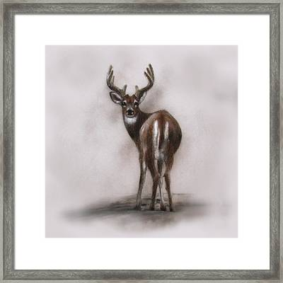 Innocent Beauty Framed Print