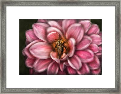 Insect - Bee - Center Of The Universe  Framed Print by Mike Savad