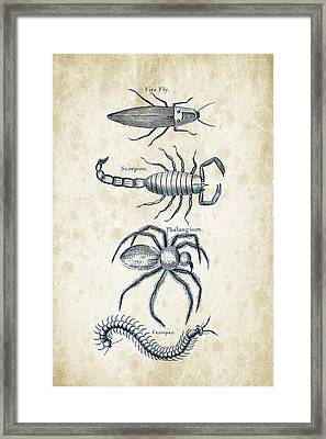 Insects - 1792 - 19 Framed Print by Aged Pixel