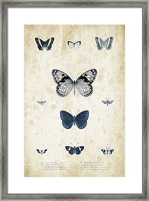 Insects - 1832 - 03 Framed Print by Aged Pixel