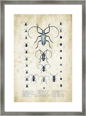 Insects - 1832 - 08 Framed Print by Aged Pixel