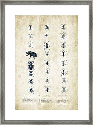 Insects - 1832 - 09 Framed Print by Aged Pixel