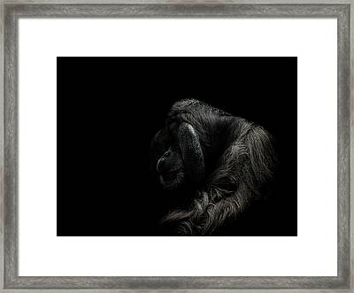 Insecurity Framed Print