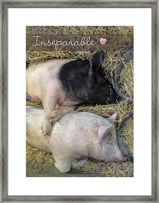 Inseparable Framed Print by Lori Deiter
