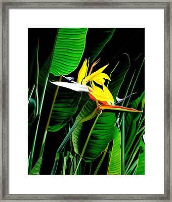 Inseparable Love Framed Print by Sunhee Kim Jung