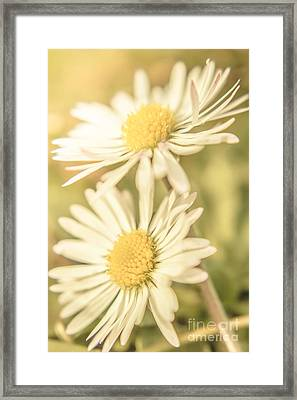 Inseparable  Framed Print by Jorgo Photography - Wall Art Gallery