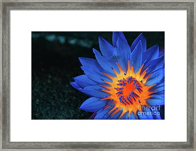 Inside Flames  Framed Print by Prar Kulasekara