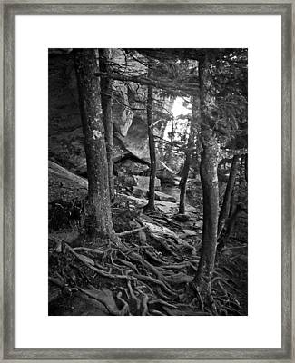 Inside Grandfather Mountain Framed Print