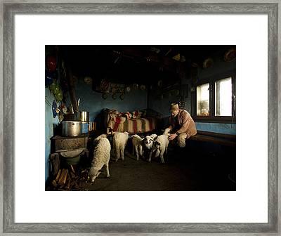 Inside His House Framed Print by Mihnea Turcu