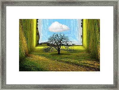 Inside The Box Framed Print