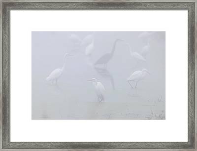 Inside The Fog Framed Print