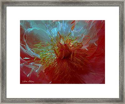 Inside The Heart Of A Peonie Framed Print by Sabine Stetson