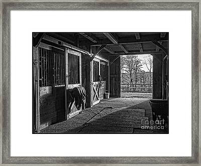 Inside The Horse Barn Black And White Framed Print