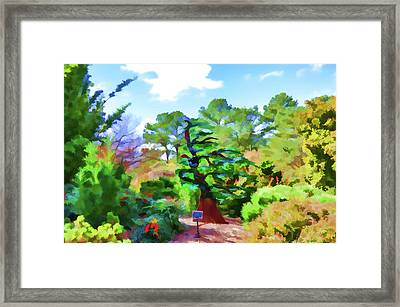 Inside The Japanese Garden 1 Framed Print