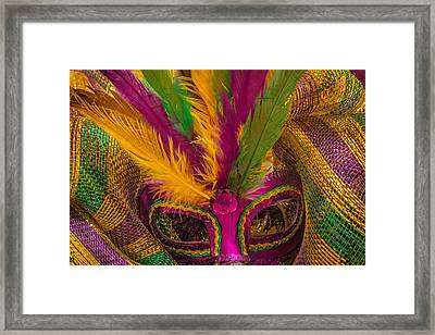 Framed Print featuring the photograph Inside The Masquerade by Julie Andel