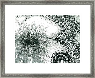 Insights From The Infinite Intelligence #655 Framed Print