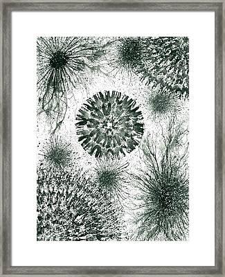 Insights From The Infinite Intelligence #657 Framed Print by Rainbow Artist Orlando L aka Kevin Orlando Lau