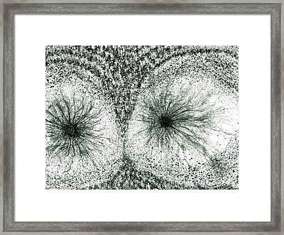 Insights From The Infinite Intelligence #658 Framed Print by Rainbow Artist Orlando L aka Kevin Orlando Lau