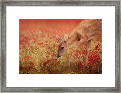 Inspecting The Poppies Framed Print