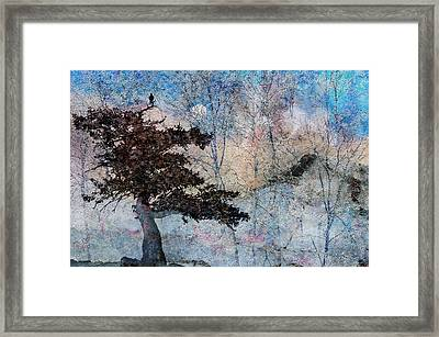Inspira Framed Print