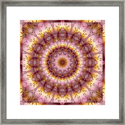 Inspiration Framed Print by Bell And Todd