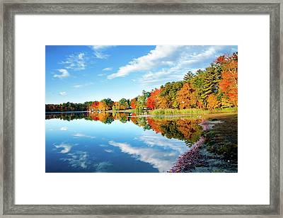 Framed Print featuring the photograph Inspiration by Greg Fortier