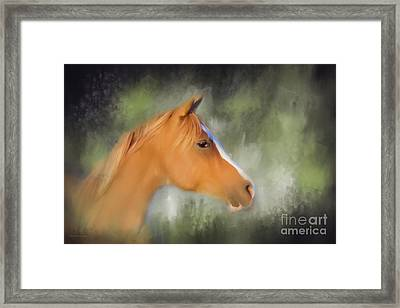 Inspiration - Horse Art By Michelle Wrighton Framed Print by Michelle Wrighton
