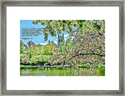 Inspirational - Cherry Blossoms Framed Print