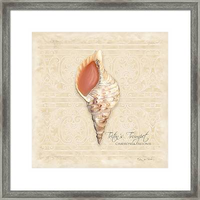 Inspired Coast 2 - Triton's Trumpet  Chaeronea Tritonis Shell Framed Print by Audrey Jeanne Roberts