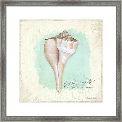 Inspired Coast Vii - Lightning Whelk Shell On Board Framed Print