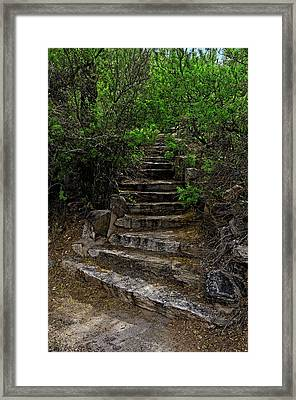 Framed Print featuring the photograph Instep With Nature V53 by Mark Myhaver