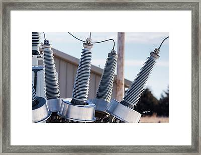 Framed Print featuring the photograph Insulators Gone Wild by Bill Kesler