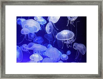 Intangible Realities Framed Print