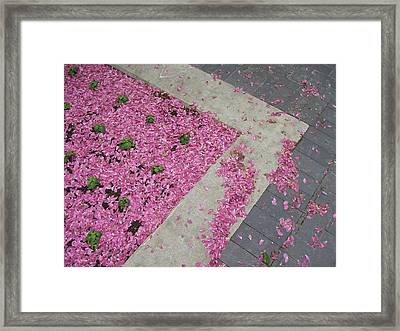 Framed Print featuring the photograph Integrity by Mary Mikawoz