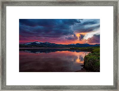 Intense Framed Print