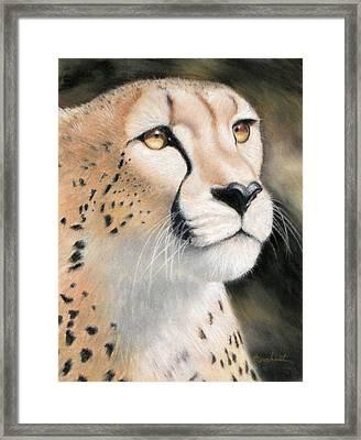 Intensity - Cheetah Framed Print