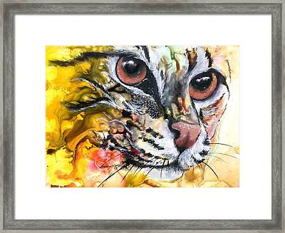 Framed Print featuring the painting Intensity by Sherry Shipley