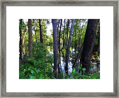 Interior Lake Chale Island Framed Print