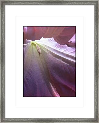 Framed Print featuring the photograph Interiors by Kevin Bergen