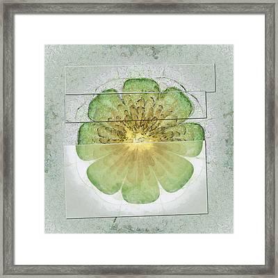 Intermeningeal Agreement Flowers  Id 16164-053239-04261 Framed Print by S Lurk