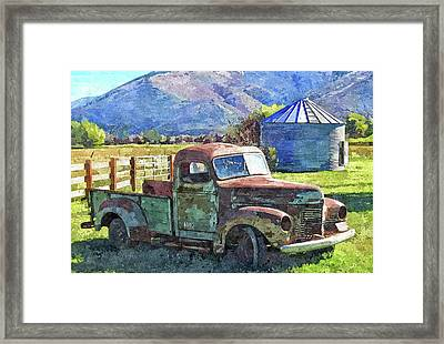 International Farm Dop Framed Print