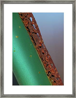 Framed Print featuring the photograph International Green by Susan Capuano