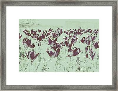 Interplay Framed Print