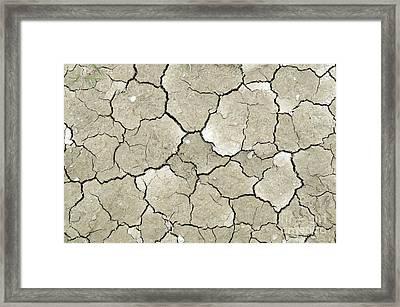 Interpretive Framed Print by Lawrence Nunziato