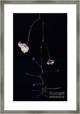 Interrupted Framed Print by Mattie O
