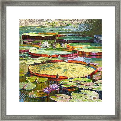Interwoven Beauty Framed Print by John Lautermilch