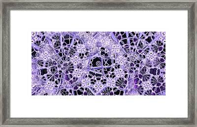 Framed Print featuring the digital art Interwoven by Ron Bissett