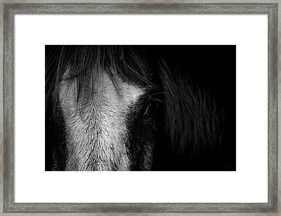 Intimate  Framed Print by Paul Neville