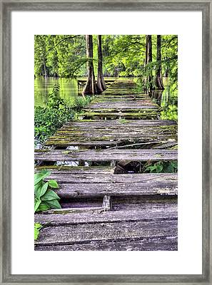 Into Cajun Country Framed Print by JC Findley